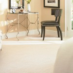 Mohawk Modern Mystique Carpet