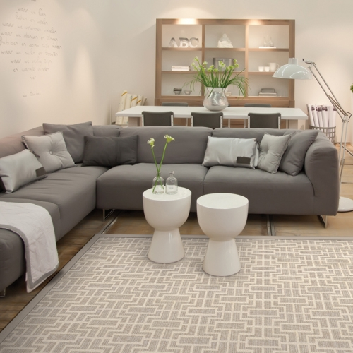Area Rugs In Rockford Many Sizes And