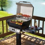 Broilmaster Gas Grill H3X