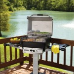 Broilmaster Premium Series P3X Gas Grill