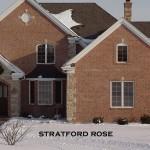 Stratford Rose