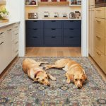 grey and gold pet-proof area rug in parlour