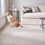 Textured light color per-proof carpet